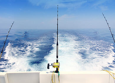 Experience a Deep Sea Fishing trip